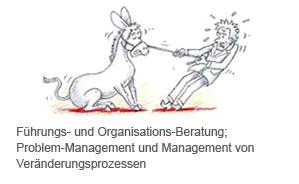 Führungs- und Organisations-Beratung